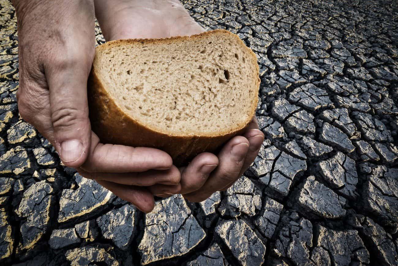 World Food Week: Bread on hand