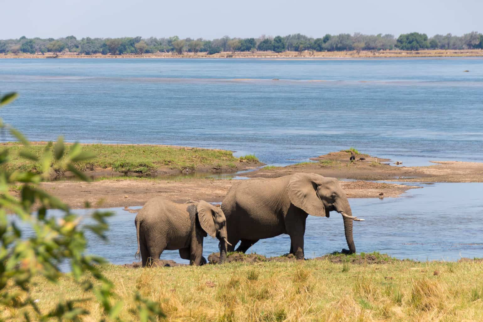 BGH_view-from-royal-zambezi-lodge